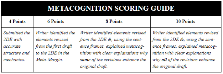 MetaCog Scoring Guide