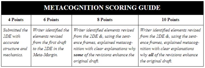 MetaCog Scoring Guide